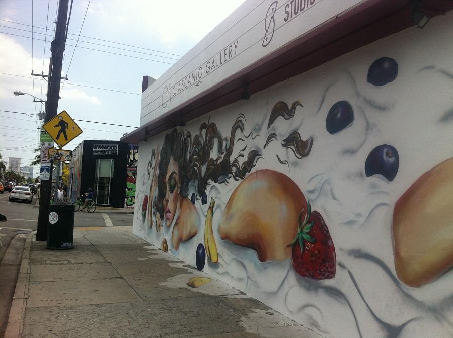 wynwood miami art distric o que fazer em miami graffiti